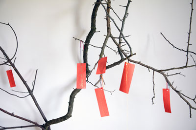 Chinese Wishing Tree, photo Chris Park